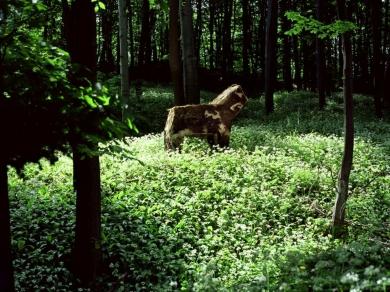 Gyenis Tibor: Vidéki Kirándulás május 15., 2004.