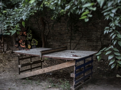 Kállai Márton: Leonardo kert,(részlet a Közösségi kertek című sorozatból), 2015.