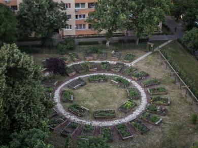 Kállai Márton: Kelen kert,(részlet a Közösségi kertek című sorozatból), 2015.