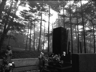 Ridovics András: Cím nélkül, (részlet a Japán című sorozatból), 2002.