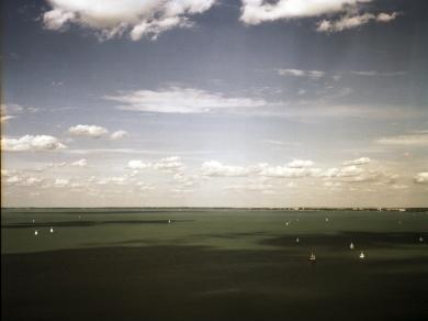 Simon Márk: 01 (részlet a Lacus Pelso - Sekély tó című sorozatból), 2010.