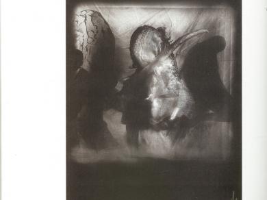 Telegdy Zoltán: I., (részlet a Napló című sorozatból), 1995.