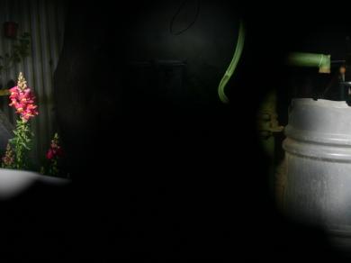 Tolvaj Panna: Cím nélkül,(részlet a Részletek című sorozatból), 2007.